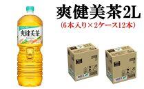 爽健美茶2Lペットボトル(6本入り×2ケース 12本)