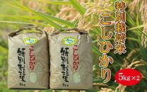 特別栽培米 千葉県産コシヒカリ 5kg×2