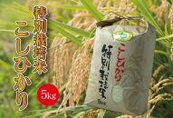 特別栽培米 千葉県産コシヒカリ 定期便 5kg×6回