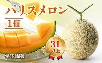 いっぺん食べてみねの~! 赤肉メロン(3L×1)