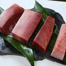 静岡県漁連天然みなみまぐろ中トロ付柵4柵コース