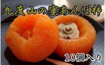 ※受付終了※【無添加】九度山あんぽ柿「蜜あんぽ」大きめサイズ10袋入り