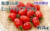 【3月出荷分】和歌山産ミニトマト「アイコトマト」約2kg(S・Mサイズおまかせ)