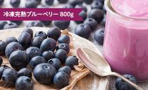 【農家直送!用途色々】冷凍完熟ブルーベリー800g