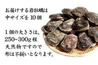 【加賀市・橋立港産】素潜り漁の天然岩かき[生食用/殻付き]中サイズ×10個