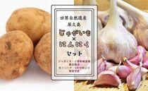 世界自然遺産屋久島ジャガイモ・生にんにくセット