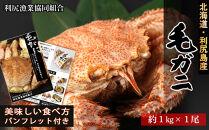 利尻直送!プレミアム★毛ガニ特々大サイズ1尾<利尻漁業協同組合>