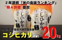 20kg令和2年産コシヒカリ(10kg×2袋)千葉県大網白里市産