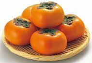 【2021年10月上旬以降出荷】和歌山県産平核無柿〈ご家庭用〉約5kg