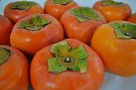 ★11月発送★【傷あり】ご家庭用富有柿(約7.5kg)