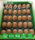 和歌山産 キウイフルーツ 約3.6㎏ (20玉~36玉)