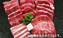 「観戦チケット1枚」+「丹波篠山牛食べ比べ焼き肉セット(300g)」