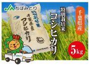 千葉県産コシヒカリ特別栽培米  5kg