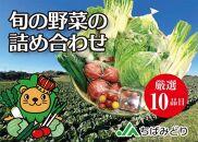 旬の野菜セット(10品目)