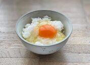 喜び重 名古屋コーチンの卵とお米のセット