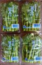 菜の花(パック入り)約1.2kg