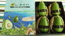 ギフト用アボカド1Kg(松山市産/品種おまかせ)