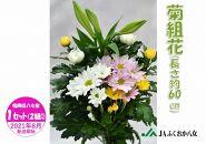 菊組花(長さ約60㎝)1セット(2組入り)8月2日~13日発送予定