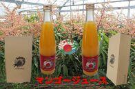 沖縄県糸満産 マンゴージュース