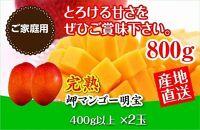 【ご家庭用(訳あり)】鹿児島県産完熟マンゴー<明宝>約800g以上【2021年発送分先行予約】