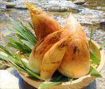 糸島峠の筍 痺れる辛さがやみつき筍 鴨が筍しょってきた 水煮筍の塩麴漬け 3セット