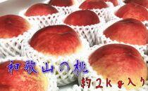 【夏の美味】フルーツ王国 和歌山の桃 約2㎏[7月上旬~7月下旬発送予定]