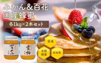 かの蜂みかん&百花国産蜂蜜ビンセット2kg(1kg×2)はちみつ