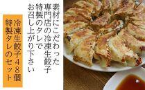 冷凍生餃子48個と特製タレのセット