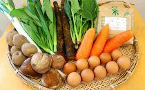 減農薬・農薬不使用で栽培した季節の野菜(7~9品)・米(2kg)・卵(10個)セット