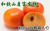 【厳選・産直】和歌山産の富有柿3L・4Lサイズ約2kg(化粧箱入り)