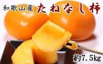【秋の味覚】和歌山産のたねなし柿約7.5kg(M~2Lサイズおまかせ)