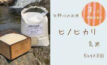 【定期便・全3回】矢野川のお米 ヒノヒカリ玄米5kgx3回