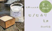 【定期便・全5回】矢野川のお米 ヒノヒカリ玄米8kgx5回
