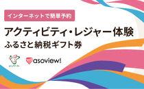 富士河口湖町アクティビティ・レジャー体験(アソビュー)ふるさと納税ギフト券10,800円分