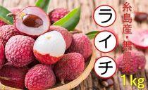 ★期間数量限定★糸島産 無農薬生ライチ(約1キログラム)