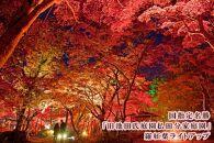 【大仙市】JTBふるぽWEB旅行クーポン(3,000円分)