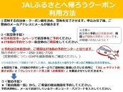 利尻富士町JALふるさとクーポン12000&ふるさと納税宿泊クーポン3000
