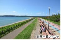 志賀町JALふるさとクーポン27000&ふるさと納税宿泊クーポン3000