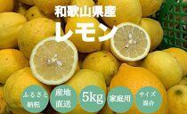 【産地直送】和歌山県産 レモン 5kg 家庭用