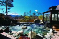 日帰り温泉「富士眺望の湯ゆらり」 入泉券2枚
