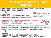 奥州市JALふるさとクーポン12000&ふるさと納税宿泊クーポン3000