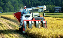 【頒布会】魚沼プレミアム(有機肥料、農薬不使用)「匠が作るこだわり米」玄米10kg×全12回