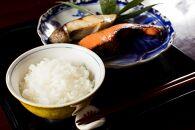 【高級】南魚沼しおざわ産こしひかり10kg(無洗米)