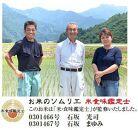 【頒布会】【いしざかさん家の】塩沢産従来コシヒカリ(5kg×2入)×12ヶ月
