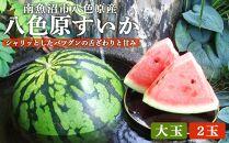 【高級】八色原すいか大玉2玉