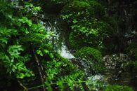 南魚沼の天然超軟水から誕生「ASAGI」(化粧水&クリーム2点セット)