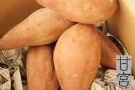 もっちりほくほく極密安納芋(食べきりパック)2kg