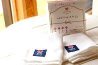 「ベビーモスリン(R)」中サイズ2枚入り国産ハンドメイドタオルおしぼりガーゼケット子育て万能布沐浴枕カバーお口ふきお手拭きに