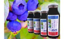 果汁100%ブルーベリージュース