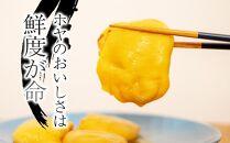 【受付再開!】黄金のさしみほや 300g×5